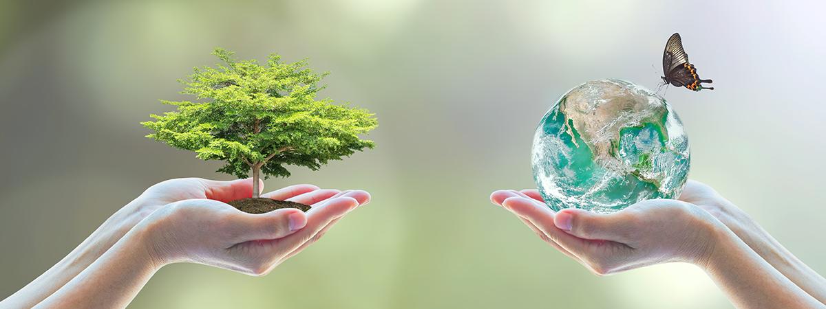 次世代の方々に調和と安らぎに満ちた地球をお渡しします